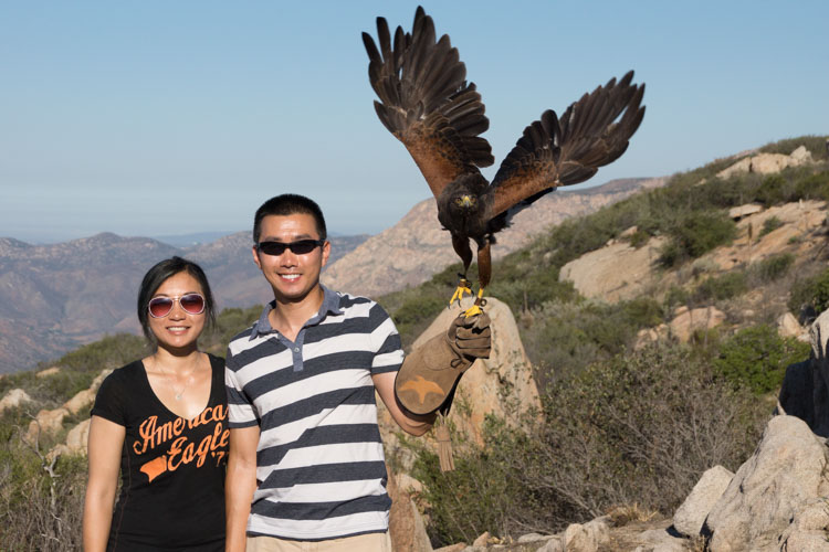 sky_falconry_private_experience_san_diego-3